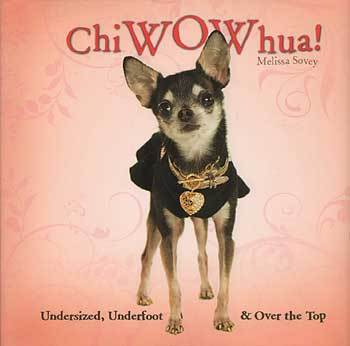 chiWOWhua